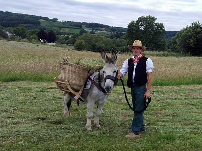 élevage ânes Belgique